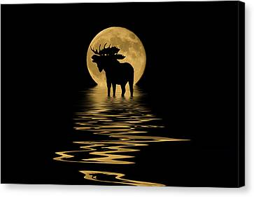 Moose In The Moonlight Canvas Print by Shane Bechler