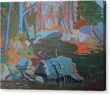 Moose Lips Brook Canvas Print