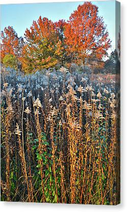 Canvas Print featuring the photograph Moraine Hills Fall Colors by Ray Mathis