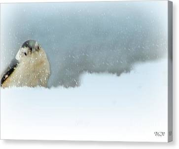 More Snow Canvas Print