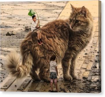 Feline Canvas Print - More Than A Friend by Solomon Barroa