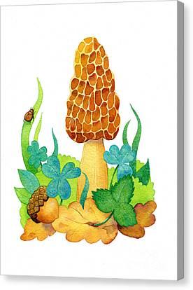 Morel Canvas Print - Morel Mushroom by Laura Nikiel