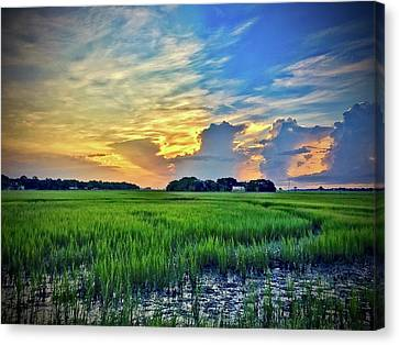Morning Across The Marsh Canvas Print by Bonnes Eyes Fine Art Photography