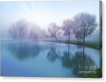 Canvas Print featuring the photograph Morning by Ariadna De Raadt