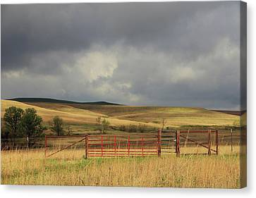 Morning At The Tallgrass Prairie Canvas Print by Christopher McKenzie