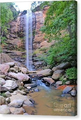Morning At Toccoa Falls, Ga Canvas Print