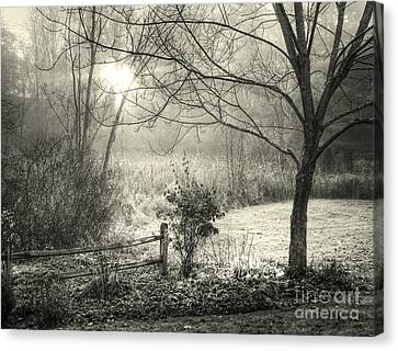Canvas Print featuring the photograph Morning Breaking by Betsy Zimmerli