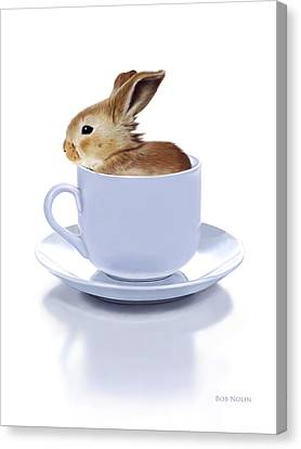 Still Lives Canvas Print - Morning Bunny by Bob Nolin