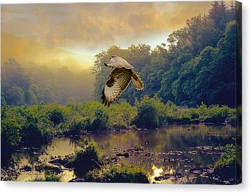 Canvas Print featuring the photograph Morning Buzzard by Roy  McPeak