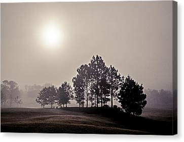 Morning Calm Canvas Print by Annette Berglund