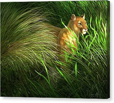 Morning Dew - Florida Panther Canvas Print by Aaron Blaise