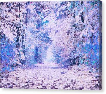 Morning Fantasy Forest Impressions Canvas Print