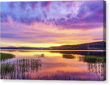 Canvas Print featuring the photograph Morning Fire by Dmytro Korol