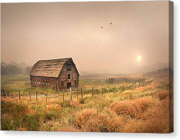 Canvas Print featuring the photograph Morning Flight by John Poon