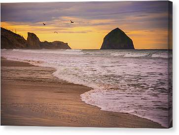 Canvas Print featuring the photograph Morning Flight Over Cape Kiwanda by Darren White