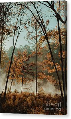 Canvas Print featuring the photograph Morning Fog At The River by Iris Greenwell