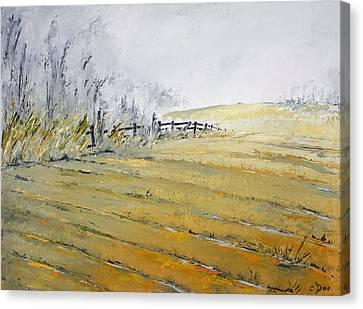 Morning Fog Canvas Print by Carolyn Doe