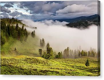 Morning Fog Over Yellowstone Canvas Print by Neal Herbert