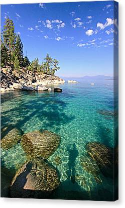 Morning Glory At The Cove Canvas Print by Sean Sarsfield