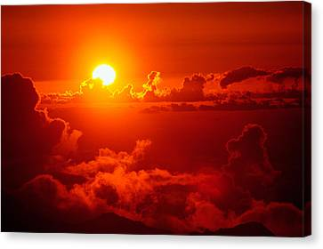 Morning Glory Canvas Print by Gary Cloud