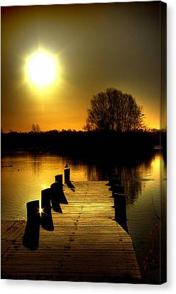 Morning Glory Canvas Print by Kim Shatwell-Irishphotographer