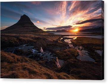 Morning Glory Canvas Print by Tor-Ivar Naess