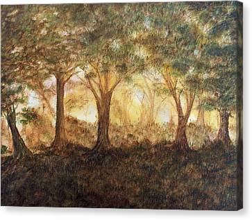 Morning Glow Canvas Print by Jeanette Stewart