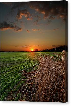 Morning Glow Canvas Print by Phil Koch