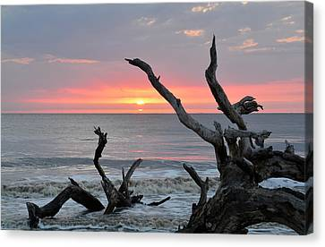 Morning Greeting Canvas Print by Bruce Gourley