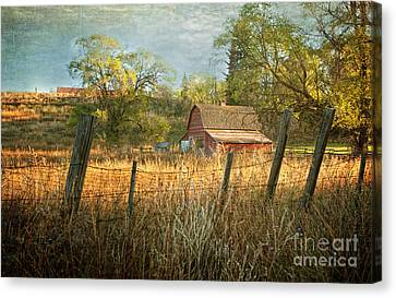 Morning Greets The Barnyard  Canvas Print by Beve Brown-Clark Photography