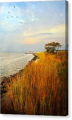Canvas Print featuring the photograph Morning Has Broken by John Rivera