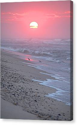 Canvas Print featuring the photograph Morning Haze by  Newwwman