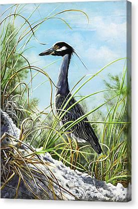 Morning Hunt Canvas Print by Joan Garcia