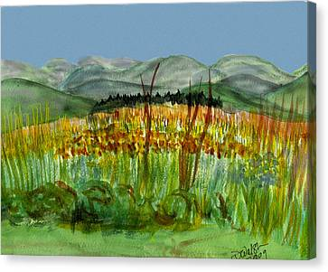 Canvas Print featuring the painting Morning In Backyard At Barton by Donna Walsh