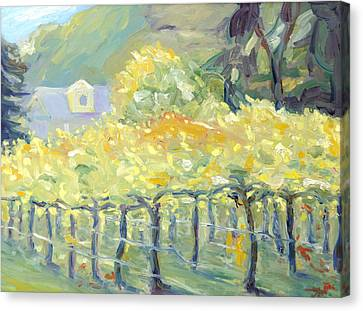 Early Fall Landscape In Napa Canvas Print - Morning In Napa Valley by Barbara Anna Knauf