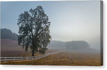 Morning In Paso Robles Canvas Print by Joseph Smith