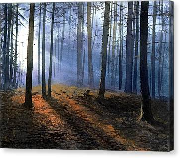 Morning In Pine Forest Canvas Print by Sergey Zhiboedov
