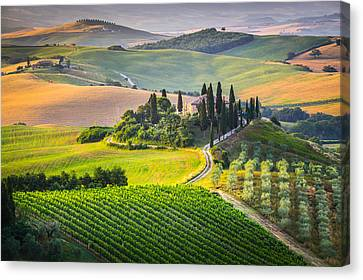 Morning In Tuscany Canvas Print by Stefano Termanini