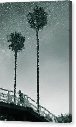 Canvas Print featuring the photograph Morning by Kevin Bergen