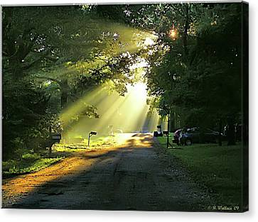 Canvas Print featuring the photograph Morning Light by Brian Wallace