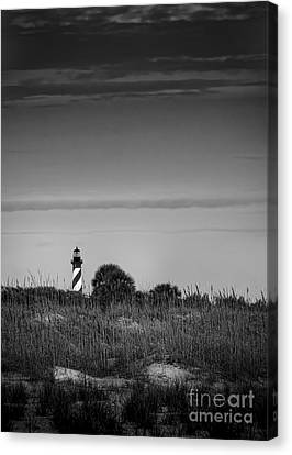 Morning Light-bw Canvas Print by Marvin Spates