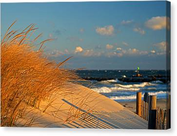Morning Light - Cape Cod Bay Canvas Print by Dianne Cowen