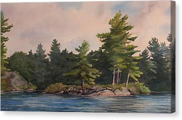 Morning Light  Canvas Print by Debbie Homewood