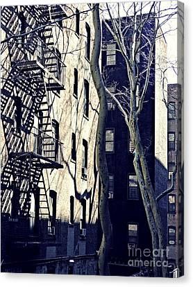 Morning Light On Bennett Avenue Canvas Print