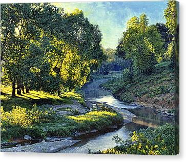 Morning Light On The Creek Canvas Print by Bruce Morrison