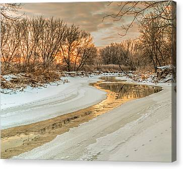 Morning Light On The Riverbank Canvas Print
