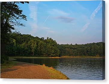 Morning Light On Walden Pond Concord Ma Canvas Print