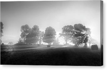 Rural Landscapes Canvas Print - Morning Lights Bw by Bill Wakeley