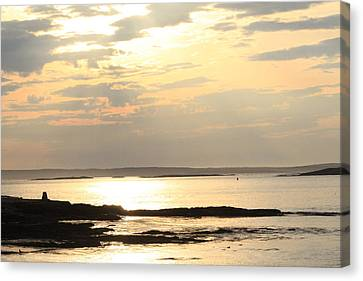Rocky Maine Coast Canvas Print - Morning Memories. by Bonny Bartlett