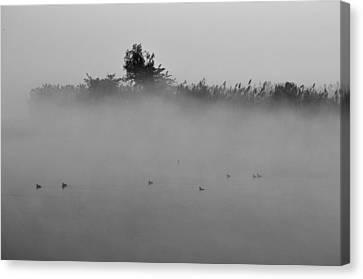 Morning Mist At Wetland Of Harike Canvas Print